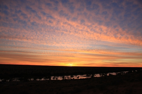 Sunset at Eyre Creek