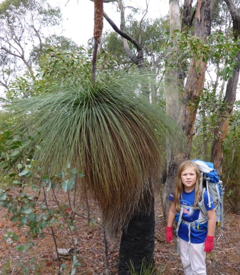 Dad wanted a photo of me by the Grass Tree