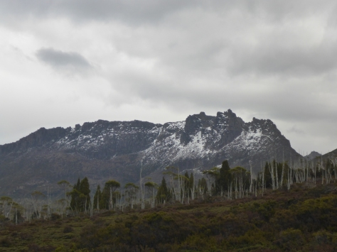 The mighty Mt Ossa. Tassies highest peak at 1617m would be a great side trip on a clear, snow-free day.