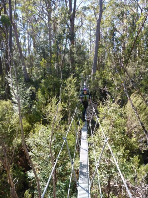 Another suspension bridge over Cephissus Creek