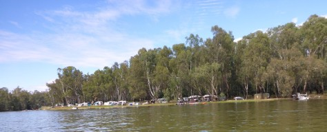 There were sections of the river where there are many campers. This area near Cobram was popular with waterskiers and bogans.
