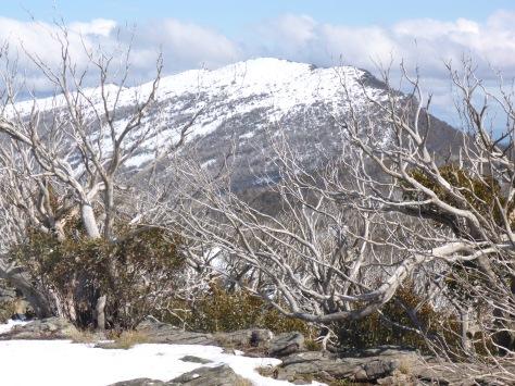 Mt Eadley Stoney